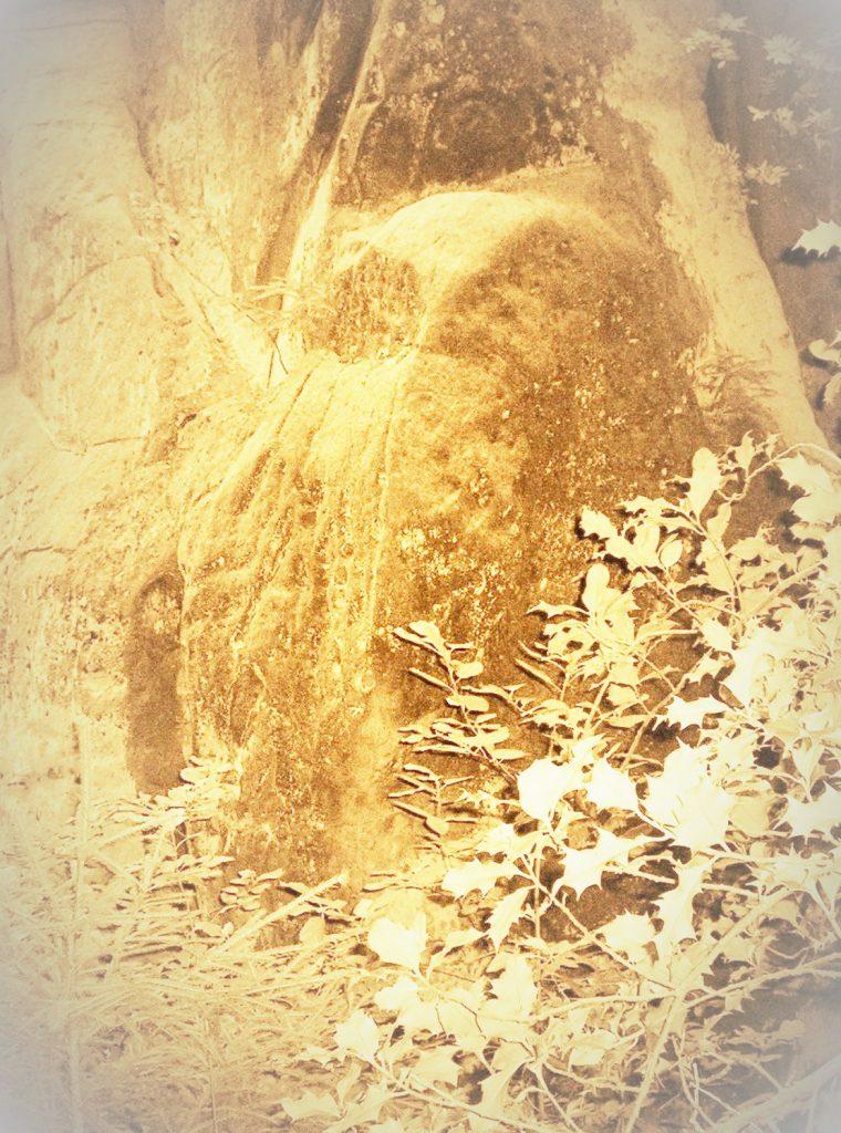 Eule am Felsen der Großen Mutter